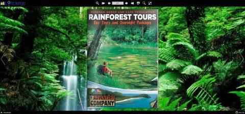 20.Rainforest Tours Brochure